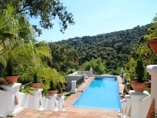 Luxury 7 bedroom Villa Nr Marbella - Marbella vacation rentals