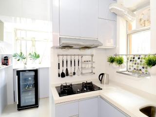 iCANDY!TRIPADVISOR HONG KONG deLUXE VACATION HOME - London vacation rentals