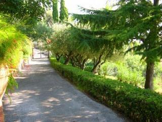 Villa Giulia - Basilicata vacation rentals