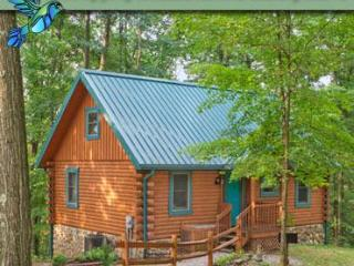 Hummingbird Hill Cabin 1 - Logan vacation rentals