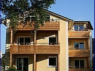 LLAG Luxury Vacation Apartment in Bad Aibling - 527 sqft, new, modern, bright (# 2747) - Bad Feilnbach vacation rentals
