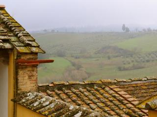 3 bedrooms with garden in the heart of Chianti - Montespertoli vacation rentals