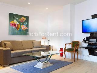 Newly renovated 1BD/1.5BA Saint Germain des Pres - Paris vacation rentals