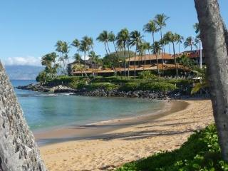 EXTRAORDINARY RATE FOR KAPALUA LUXURY September 8- - Kapalua vacation rentals