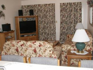 Two bedroom Condo one mile from Silver Dollar City - Branson West vacation rentals