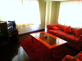 San Borja Apartment 1 - Lima vacation rentals