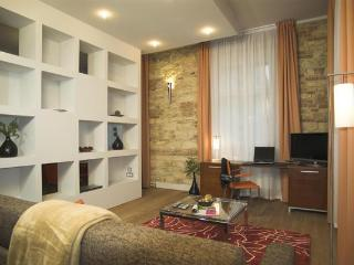 Rybna 1bedroom apartment, heart of Old Town - Prague vacation rentals