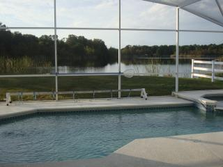 Elegant 4BR-SF Pool-Lake-GameRoom-BBQ-WiFi - Orlando vacation rentals