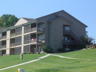 2 Bedroom Condo on Smith Mountain Lake - Huddleston vacation rentals