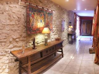 Luxurious 17 Century French Villa in The Languedoc - Nissan-lez-Enserune vacation rentals