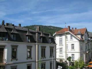 Vacation Apartment in Baden Baden - 592 sqft, modern, comfortable, warm (# 2796) - Baden-Baden vacation rentals