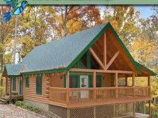 Hummingbird Hill Cabin 6 - South Bloomingville vacation rentals