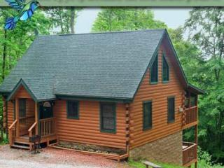 Hummingbird Hill Cabin 3 - Sugar Grove vacation rentals