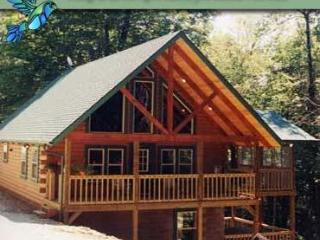 Adorable 4 bedroom House in Sugar Grove with Deck - Sugar Grove vacation rentals