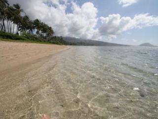 Luxury 5BR, Heated Pool, Spa, Beach,Tennis Court - Honolulu vacation rentals