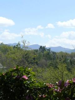 Asheville Mountain Retreat near ski slope - Weaverville vacation rentals