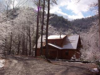 'Genesis' chalet sleeps 11/ awesome location - Townsend vacation rentals