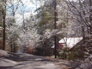 Special! Awesome location! River view! GSMNP Manna - Townsend vacation rentals