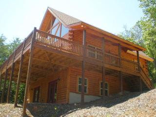 Cozy 3 bedroom Cabin in Warne with Deck - Warne vacation rentals