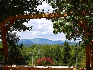 Rich Mtn Bungalow - Blue Ridge vacation rentals