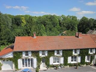 Au Pre du Moulin B&B close to Champagne vineyard - Clamanges vacation rentals