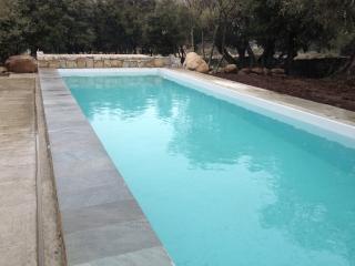 Villa Picasso holiday vacation villa rental france, southern france, provence, st. remy, pool, holiday vacation villa to rent france, - Viriat vacation rentals