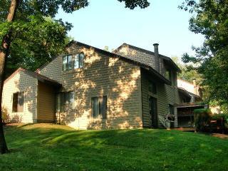 Fabulous Mountain Home in Hidden Valley! - Hidden Valley vacation rentals