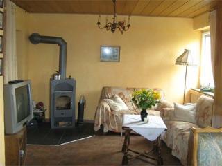 Vacation Apartment in Vallendar - 646 sqft, central, quiet, fireplace (# 2804) - Limburg vacation rentals