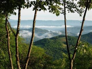 Beautiful Mountain View & Luxury Home - Beech Mountain vacation rentals