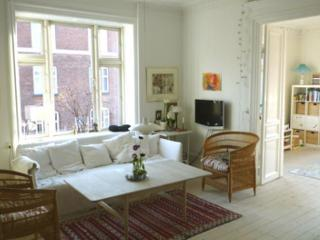 High-ceilinged Copenhagen apartment at Frederiksberg - Copenhagen vacation rentals