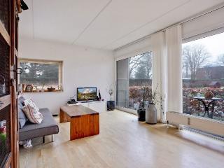 Cosy Copenhagen apartment near Frederiksberg Garden - Copenhagen vacation rentals