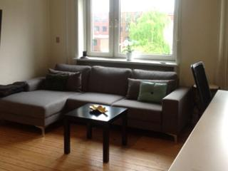Bright Copenhagen apartment close to Bispebjerg station - Copenhagen vacation rentals