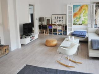 New modern Copenhagen apartment next to Noerreport - Copenhagen vacation rentals