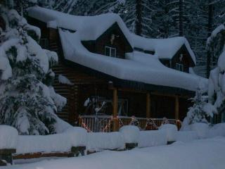 Beautiful 4 bd log home 2 blocks from Lake Tahoe - South Lake Tahoe vacation rentals