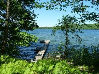 Charming 2+2 Lakeside Cottage on Best Lake in CT - Lakeville vacation rentals