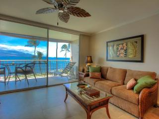 JUNE -DEC $125 0CEANFRONT Great View & Interior Perfect Couples getaway AC WIFI - Maalaea vacation rentals