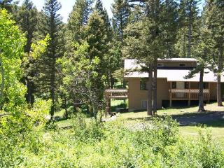 Large Mountain Home by Gallatin National Forest - Montana vacation rentals