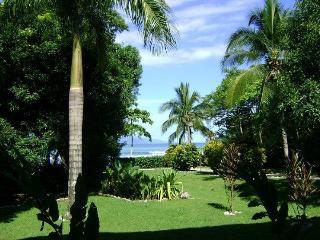 Casa Dos Rios, Beachfront, Rainforest Home, W/Surf - Cabo Matapalo vacation rentals