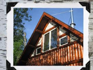 A True Lakefront Log Cabin Experience! - Rhinelander vacation rentals