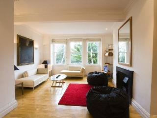 Bright 2 bedroom Dublin Apartment with Internet Access - Dublin vacation rentals