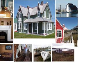 Gorgeous 4 bedroom House in Bonavista - Bonavista vacation rentals