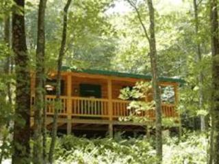 Ducks' Nest Lake View Log Cabin with Hot Tub! - Ocoee vacation rentals