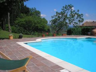 Casa Rosa - charming house with pool - Caprese Michelangelo vacation rentals