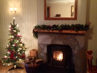 Cedar Cottage At Highland Holiday Cottages - Aviemore vacation rentals