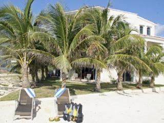 Villa Dolphin - Playa Paraiso vacation rentals
