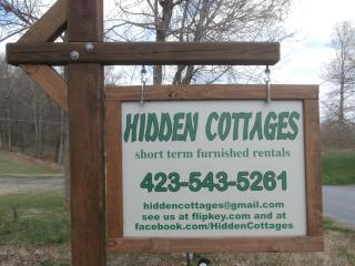 Nice Cottage with Deck and Internet Access - Johnson City vacation rentals