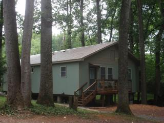 Cozy 2 bedroom Vacation Rental in Johnson City - Johnson City vacation rentals