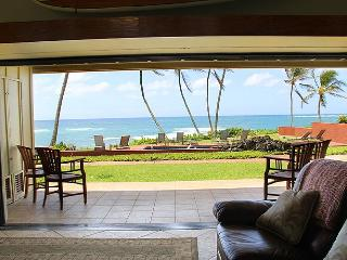 Hale Awapuhi Villa #1B - Wailua Ocean Front Condo - Anahola vacation rentals