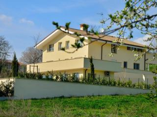 apartment in Roman countryside. Mins 30 to Rome - Rome vacation rentals