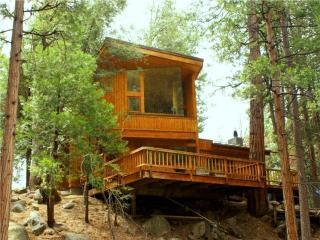 Upper Rim Rock-Architectural Masterpiece-Creek - Idyllwild vacation rentals